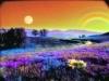 gallery_purple_pills_eminemweb328.jpg